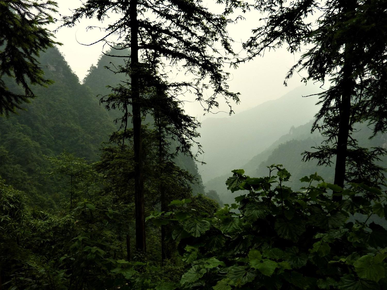 Čína, Emei Shan